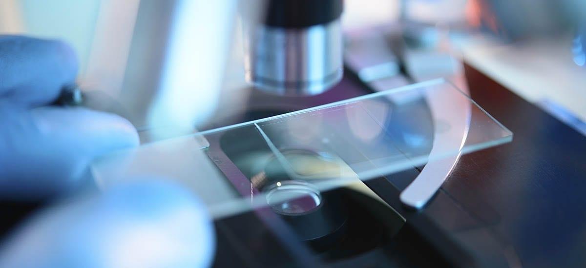 Biomanufacturing research